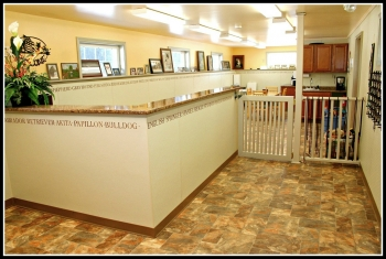 Dog & Cat Kennel and Residence